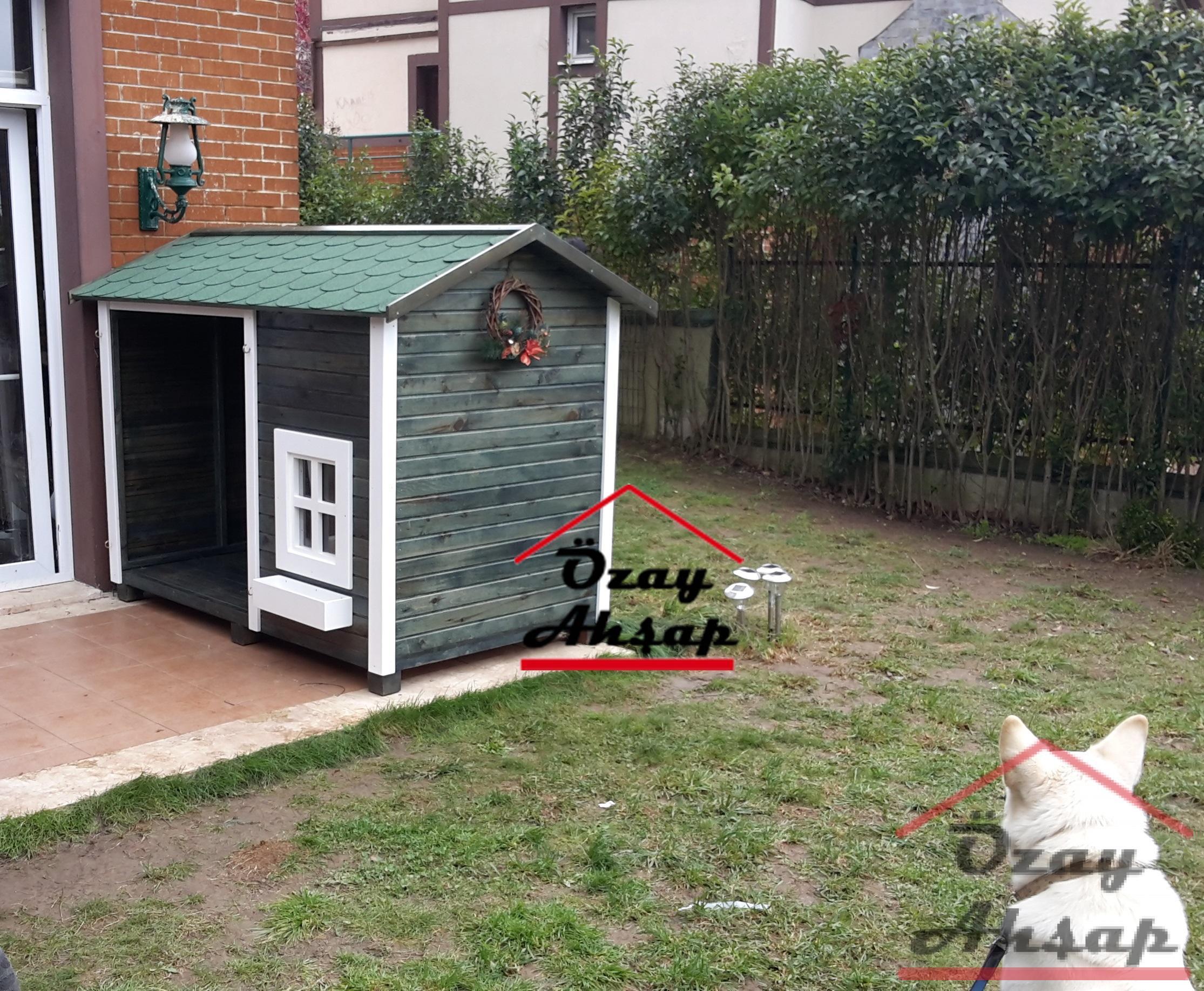 Köpek Kulübesi Köpek Kulübesi 38
